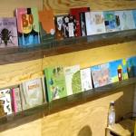 Illustrasjonsfoto av det nynorske turbiblioteket i dagsturhytta. To hyller med bøker stilt opp med framsidene fram